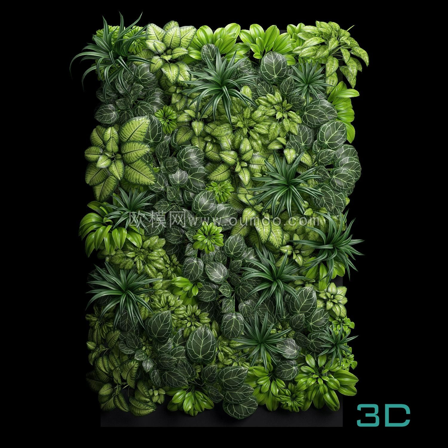 259 Plant 3dsmax Model Free Download Plants Plant Wall