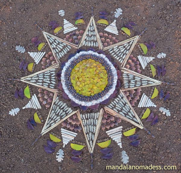 Mandala Art Medium: ~~yellow wild rose leaf, acorn, cattail fuzz, brown leaf, puff grass heads, golden field grass stem, pine cone petal, dried cattail stalk, acorn caps, yellow blackberry leaf on a brown earth canvas~~