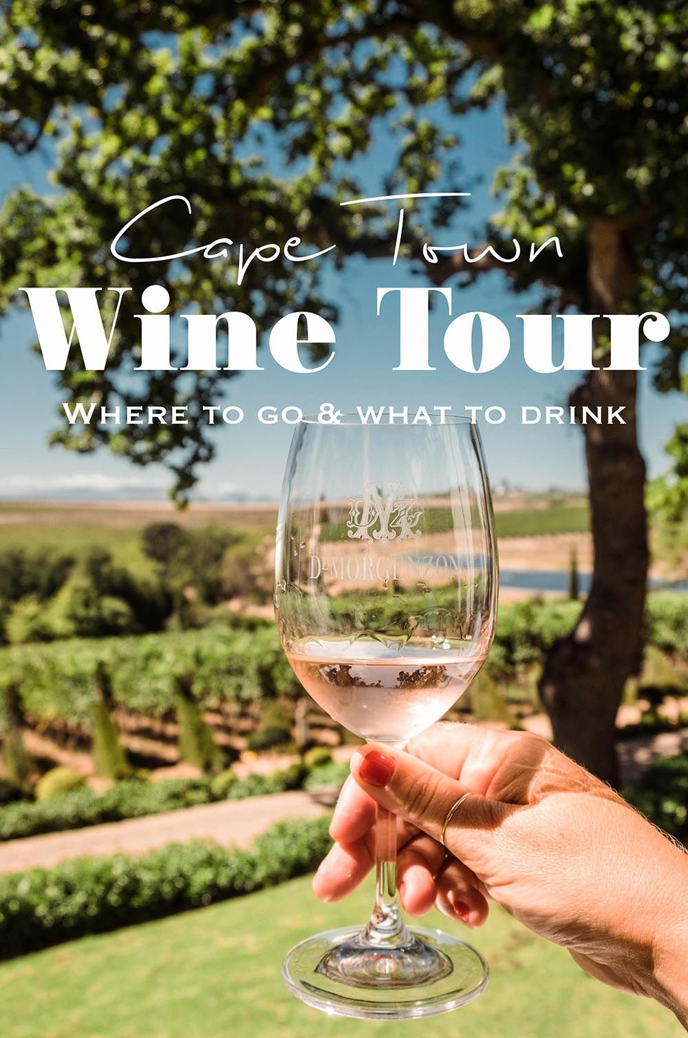 Of Kissing Frogs Musical Grapes A Cape Town Wine Tour Wine Tour Wine Travel South African Wine