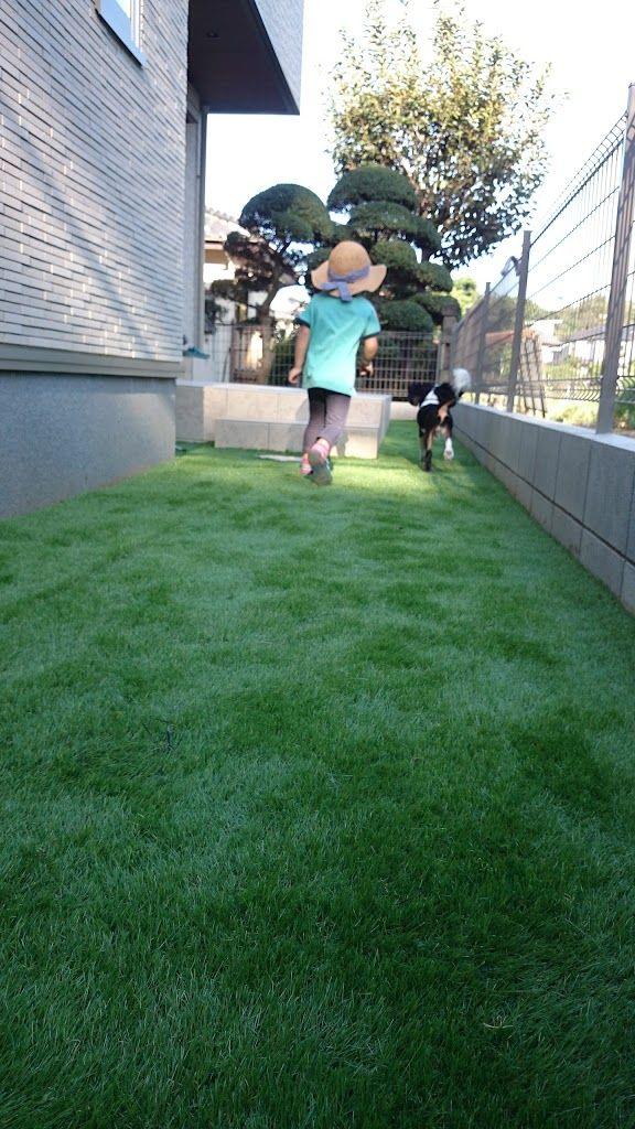 外構工事 人工芝をdiyしたらメンテナンスに優れた素敵な庭ができました 芝庭 エクステリア 庭 人工芝