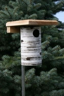 Gilbertson Pvc Bluebird Box Bird House Feeder Wild Birds Blue Bird