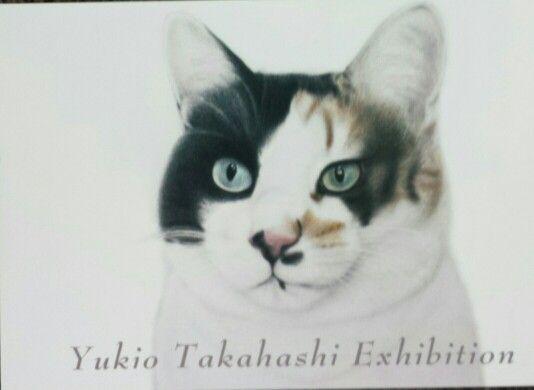 """cat by Yukio Takahashi """"puchiko"""""""