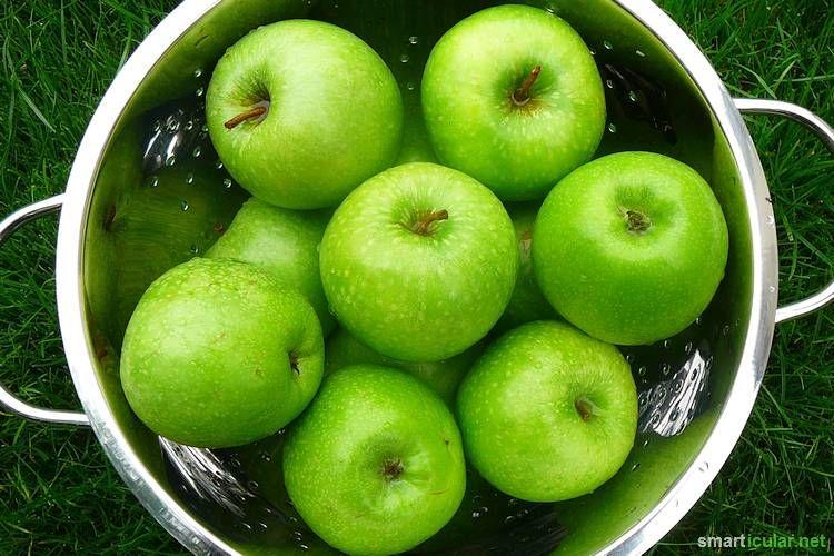 Geliermittel Apfelpektin selbermachen aus Apfelresten - alma küchen essen