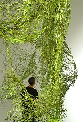 algue pinterest algue. Black Bedroom Furniture Sets. Home Design Ideas