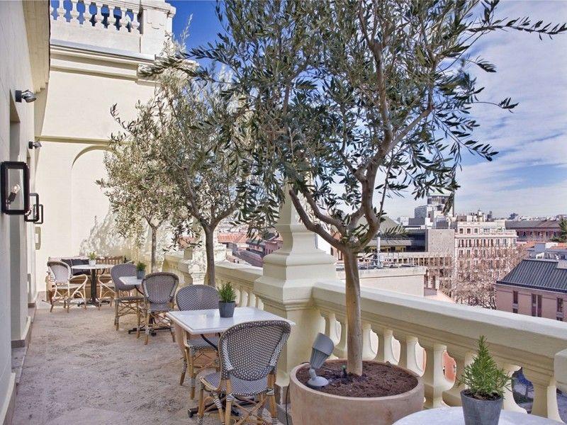 Terrasse mit Topfbäumen und bequeme Sitzecken | inspiration ...