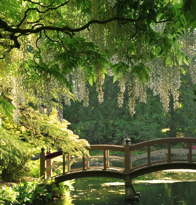 Enchanting Bridge At Hatley Park Castle / Vancouver Canada | Nature Is Beautiful | Pinterest ...