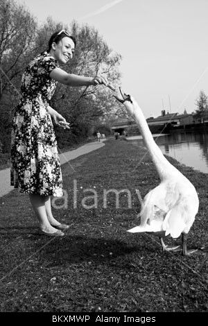 A woman, a flowery dress, a swan, a sunny day, River Lee, London, UK. Stock Photo