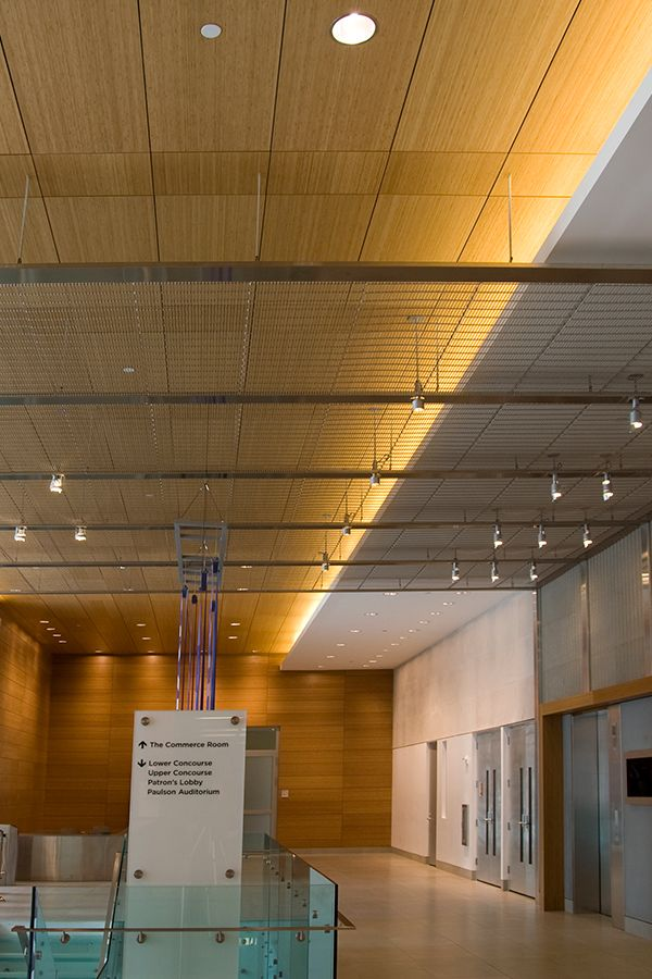Ceiling with Architectural Mesh | Pinterest | Wire mesh, Ceiling and ...