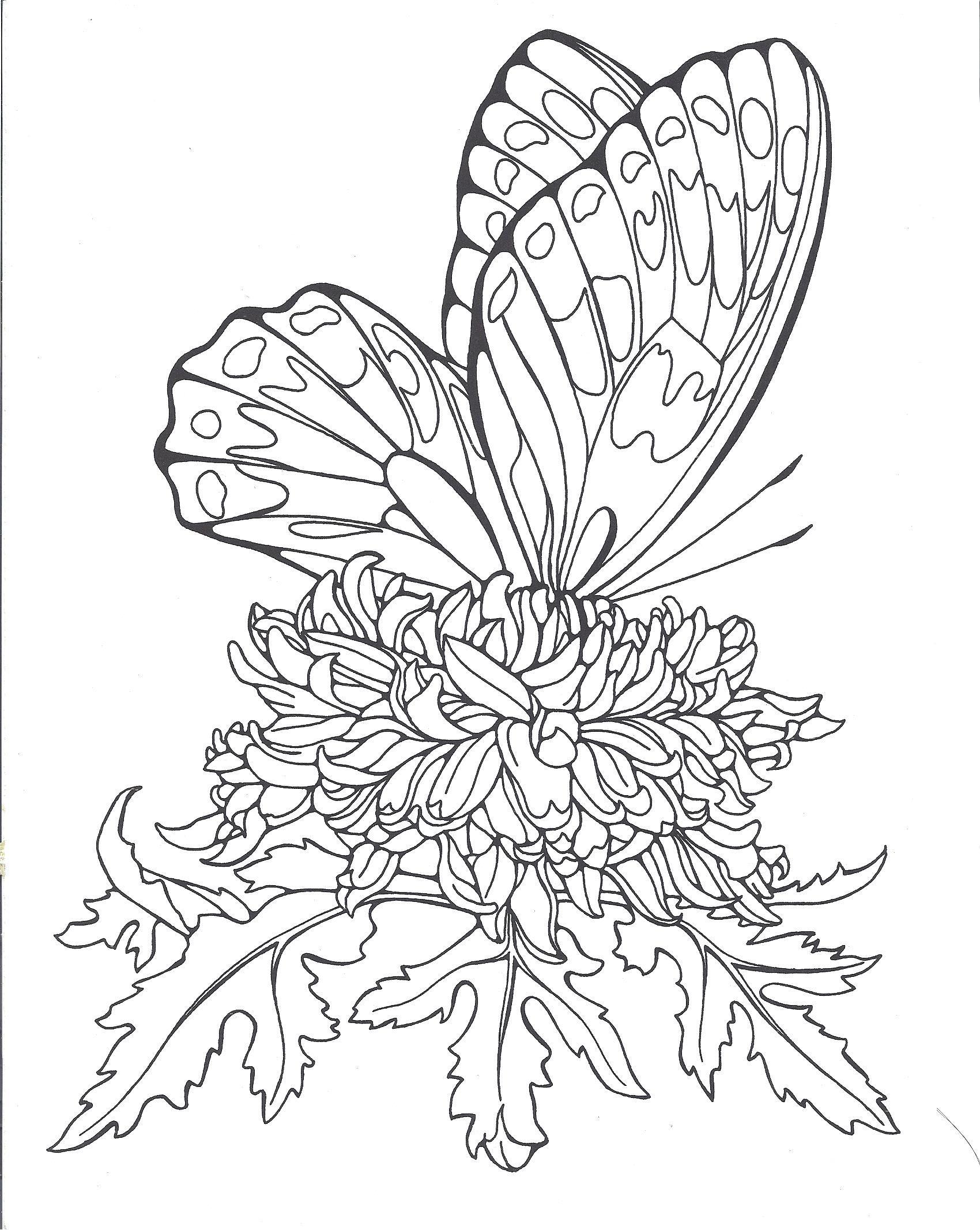 Butterflies/Ruth Heller | vymaľovánky | Pinterest | Grabado láser ...