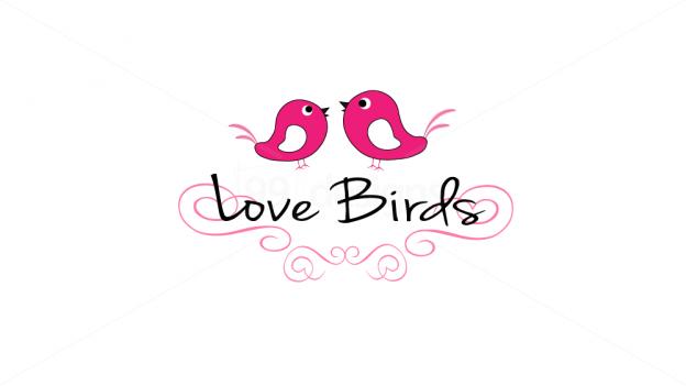 Love Birds Logo Google Search