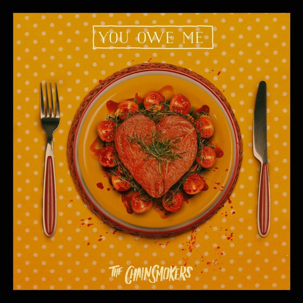 The Chainsmokers You Owe Me Mp3 Download Free 320 Kbps With