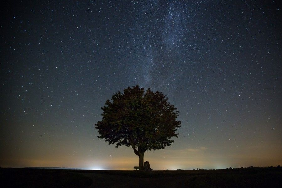 kissing under a lonely tree by Nina Maiores