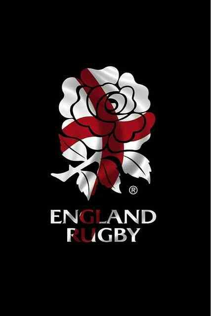 Pin By Gorilla Mode On Rugby Fun Rugby England Rugby 2015 Rugby World Cup