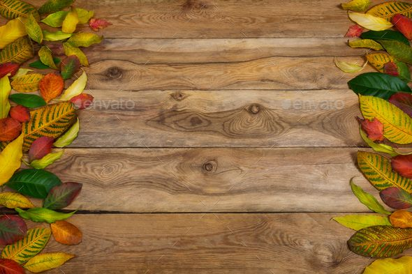 Happy Thanksgiving Greeting Background With Frame Of Colorful Fall Leaves On The Rustic Wooden Table Copy Space