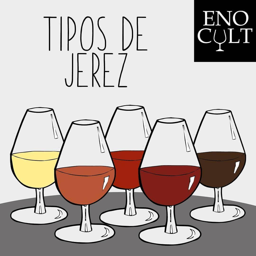Tipos De Vinos De Jerez Alcoholic Drinks Wine Wine Glass