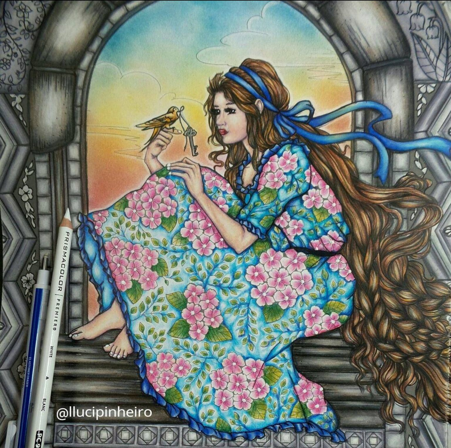 Art therapy coloring book and pencils - Colored Pencils Adult Coloring Coloring Books