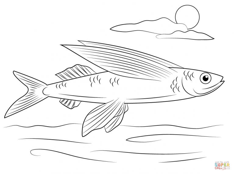 Free Printable Coloring Pages Throughout Top Rated Flying Fish Coloring Pages Fish Coloring Page Animal Coloring Pages Coloring Pages
