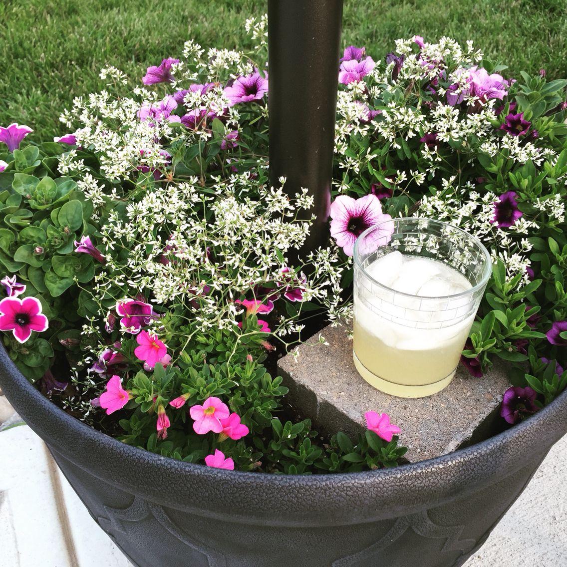 Download Wallpaper Patio Table Umbrella Flower Pot