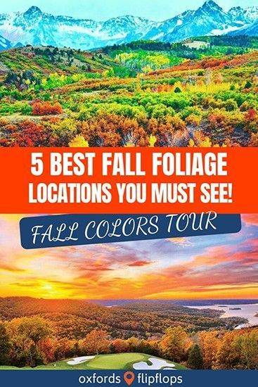 Ready for a Fall Road Trip? Love the Colors of Fall? Gas up the ride and take a look at one of these 5 TOP Fall Foliage Locations! #Aspen #Colorado #SmokyMountain #Gatlinburg #Missouri #LakeoftheOzarks #traveldestinations #travelblogger #travelusa #USA #roadtrip #familytravel