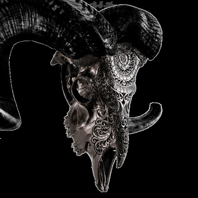 Carved Ram Skull Black Boho Ram Skull Skull Carving
