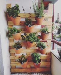 . Horta vertical sob medida para apartamento