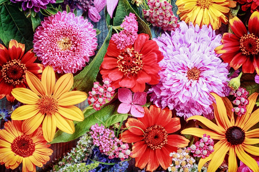 Vibrant Floral Arrangement jigsaw puzzle in Puzzle of the Day puzzles on TheJigsawPuzzles.com