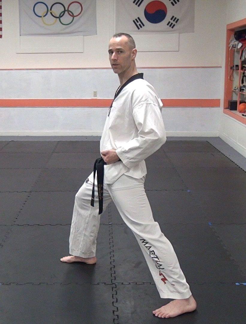 Basic taekwondo stances taekwondo martial arts martial