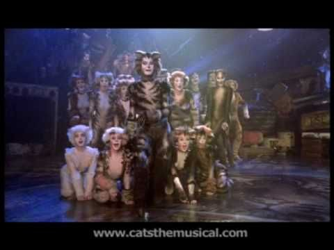 gumbie cat - Google Search CATS the Musical Pinterest - best of lyrics invitation to the jellicle ball