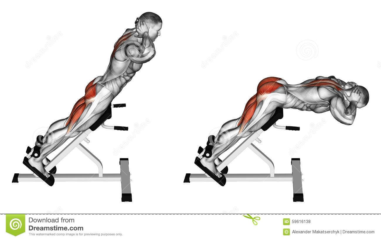 Exercising Hyperextension Stock Illustration Image
