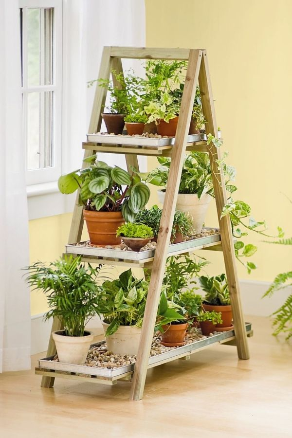 Diy Flower Stand Turn An Old Wooden Ladder Into A Flower Decoration Framed Plants Inexpensive Outdoor Furniture Herbs Indoors