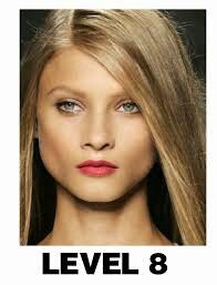 Level 8 Blonde Dark Blonde Hair Hair Levels Blonde Hair Color