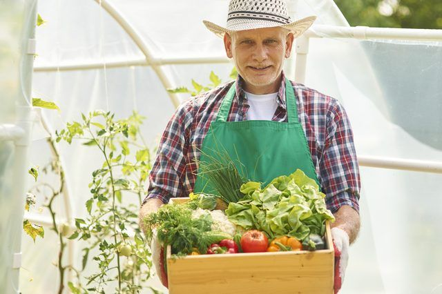 Grow vegetables in containers and enjoy a year-round harvest.