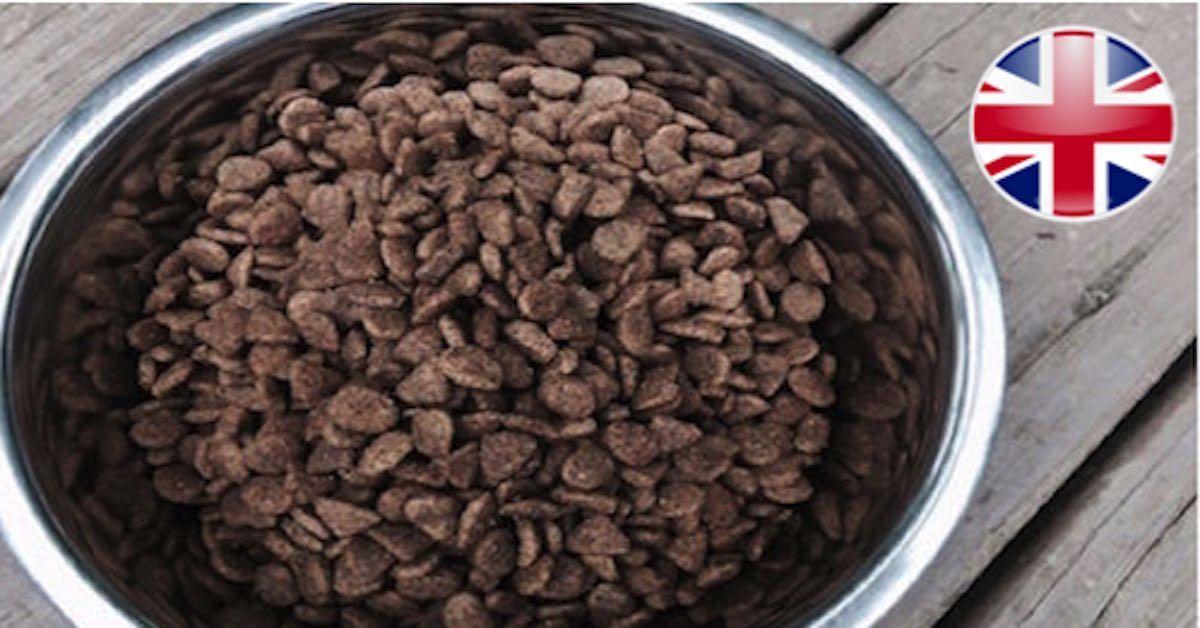 Top 10 Best Uk Dog Food Brands For 2020 Dog Food Recipes Best Dry Dog Food Nutro Dog Food