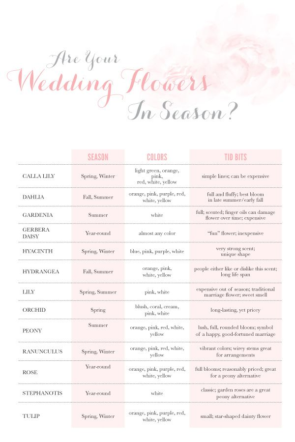 Are Your Wedding Flowers In Season Guide To Seasonal Flowers