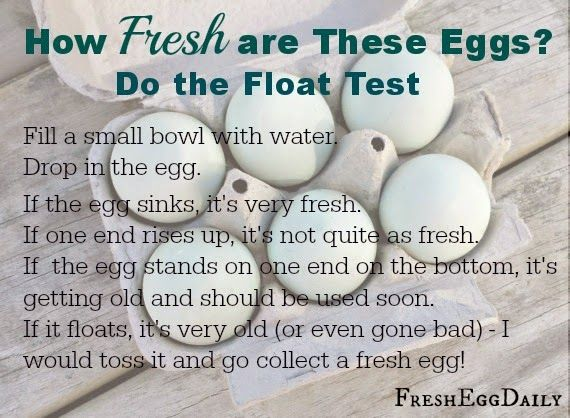 1000+ ideas about Egg Test on Pinterest | Kitchen tips, Cooking ...
