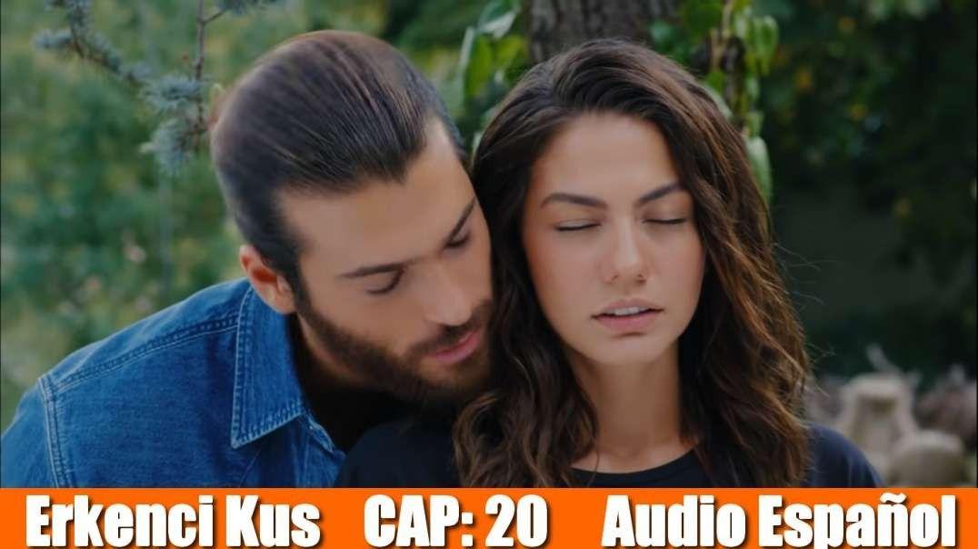 Pájaro Soñador Erkenci Kuş Capitulo 20 Sanem Youtube Soap Opera