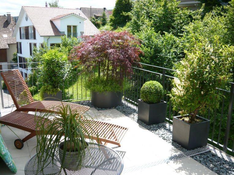 Pflanzen Sichtschutz Terrasse Kübel wohndesign terrassen