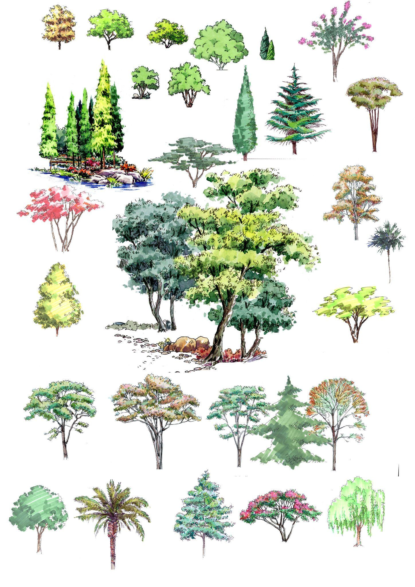 Hand-painted PSD Tree Blocks 1   dibujo   Pinterest   Plantilla de ...