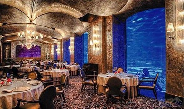 تناول أشهى المأكولات البحرية في مطعم أوسيانو في دبي Luxury Dining Places Dubai