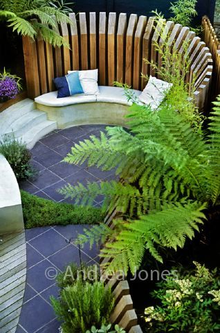 Love this small garden  House  Pinterest