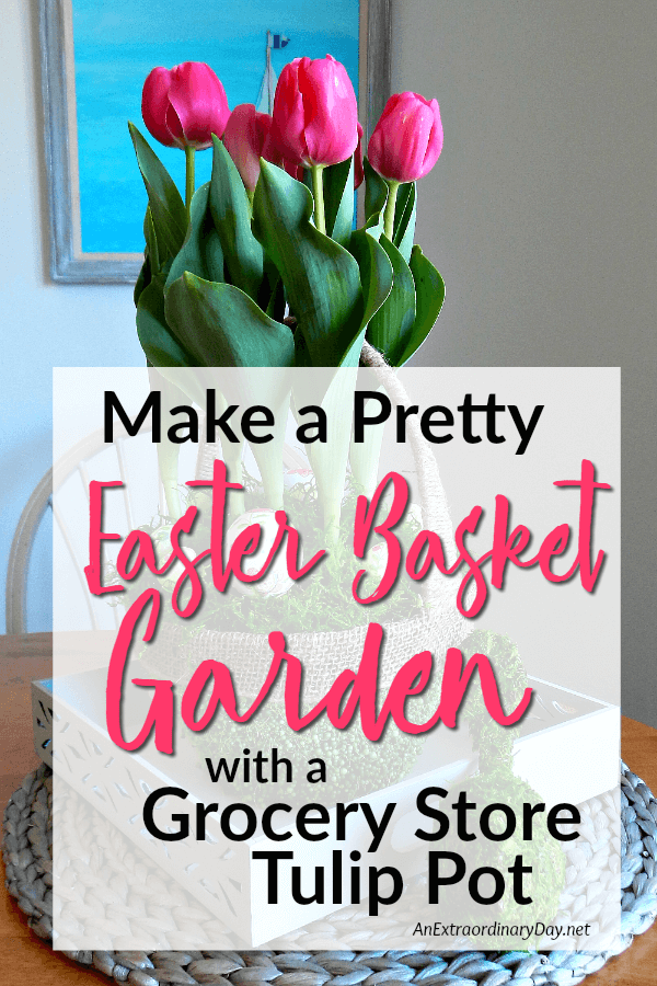 Turn a plain pot of tulips into a beautiful easter basket garden easy easter gift or centerpiece idea make a pretty easter basket garden with a negle Images