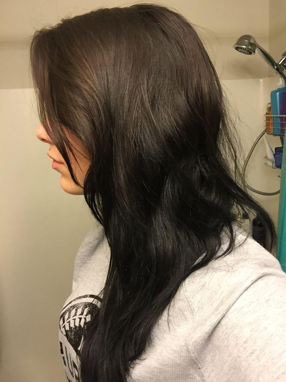 Subtle Reverse Ombre Natural Brown To Black Hairrr