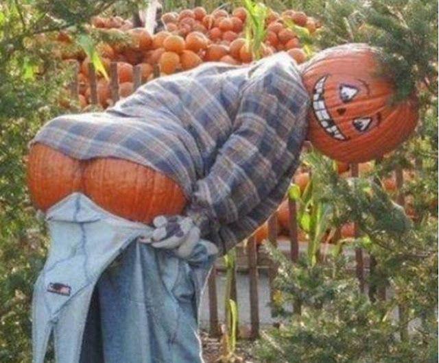 cool pumpkin carving ideas 2012 halloween pumpkin designs next year - Halloween Pumpkin Designs Without Carving