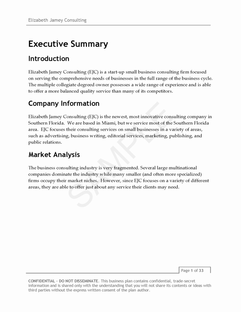 013 Consulting Business Plan Template 20Consulting Company