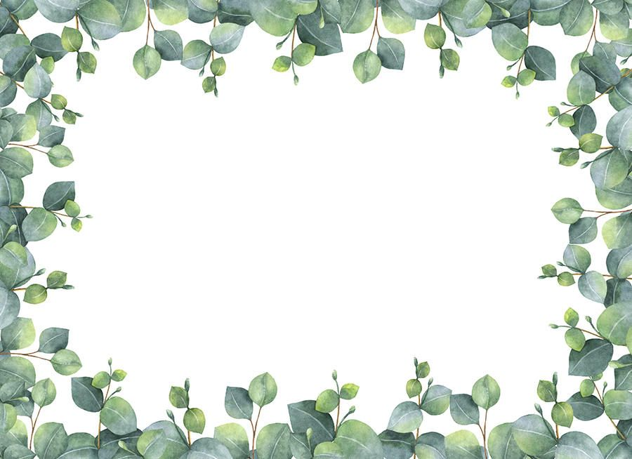 Watercolour Leaves Frame Border Clip Art Graphic Design Png Watercolor Printable Free Watercolor Leaves Succulents Wallpaper