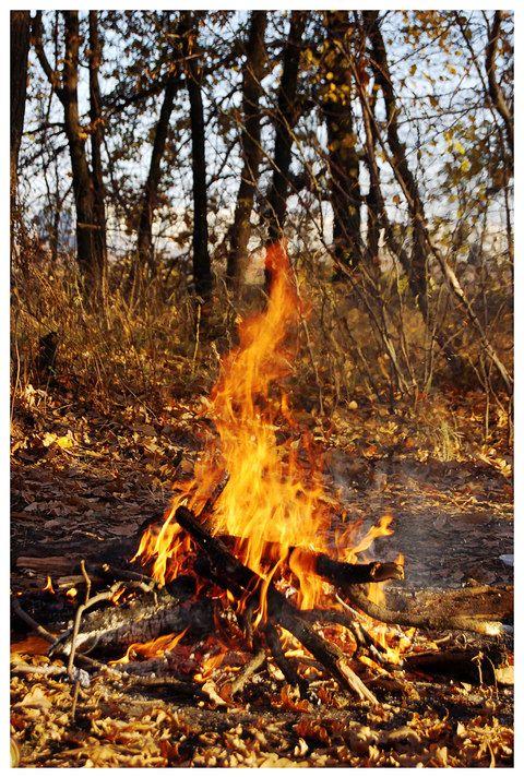Костер в осеннем лесу