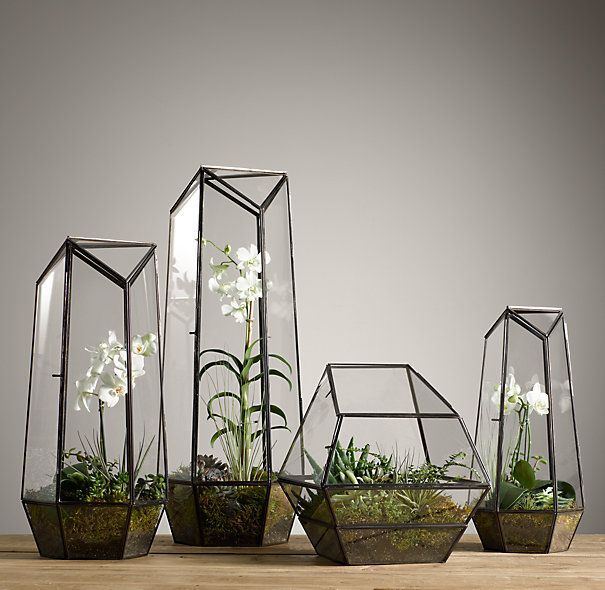 Decorative Plant Holders And Terrariums