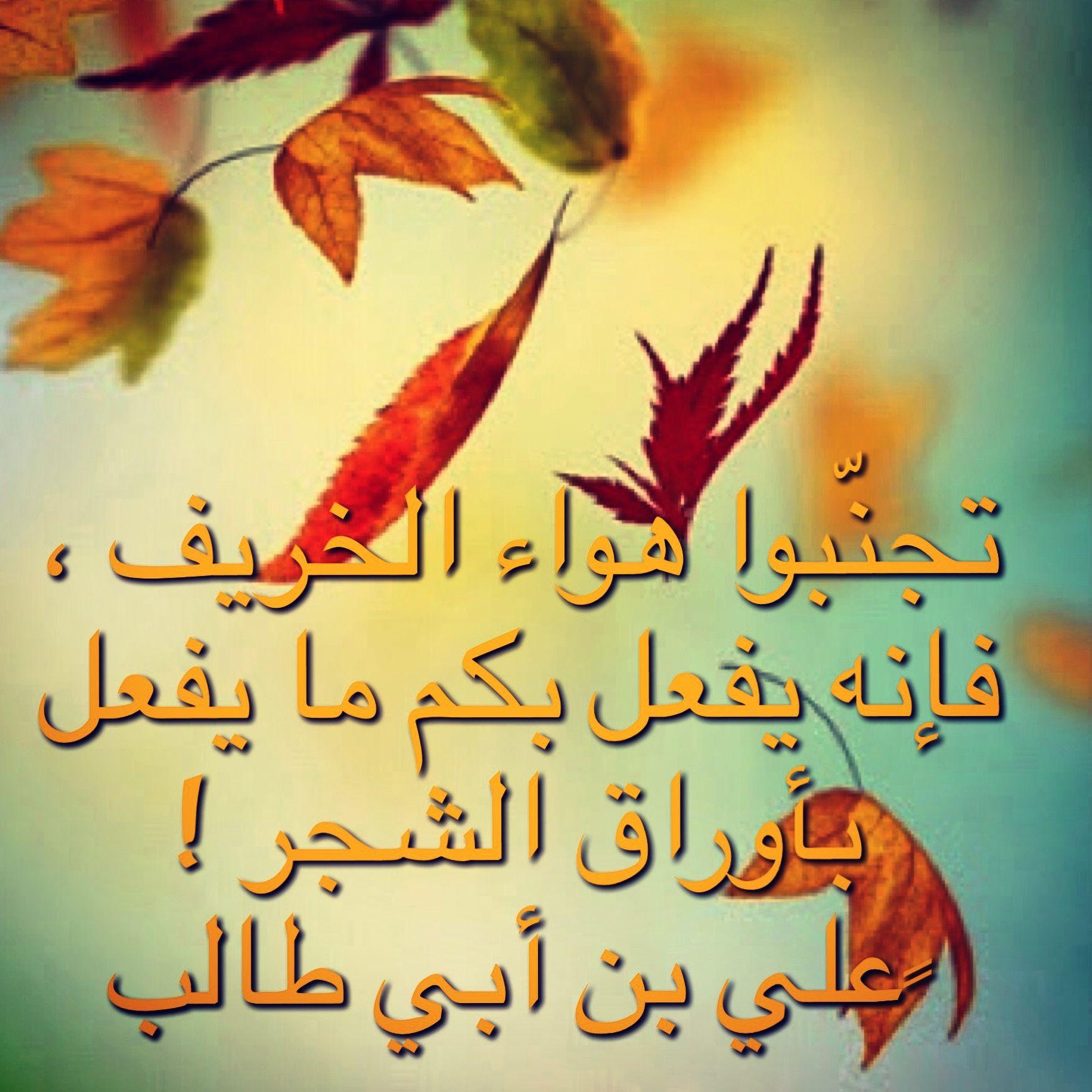 خريف علي بن ابي طالب حكمة Fall Arabic Calligraphy Calligraphy