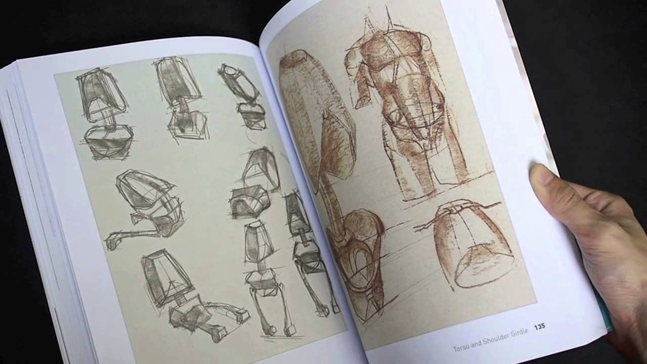 Anatomy Reference Figure Drawing Book in 2020 (With images ...