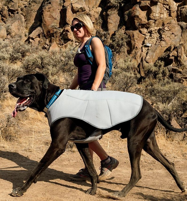 Cooler Cooling Vest For The Days That Are So Hot But You Want To